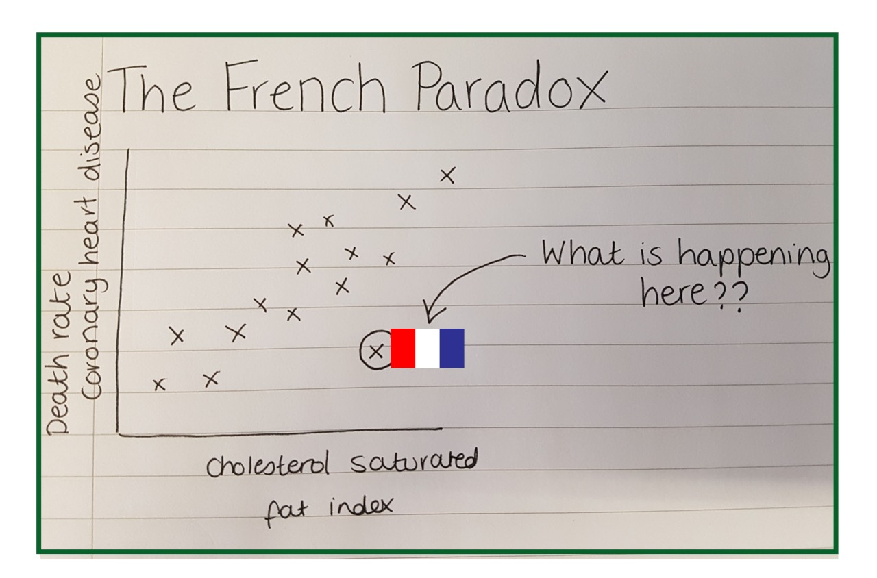 french paradox.jpg